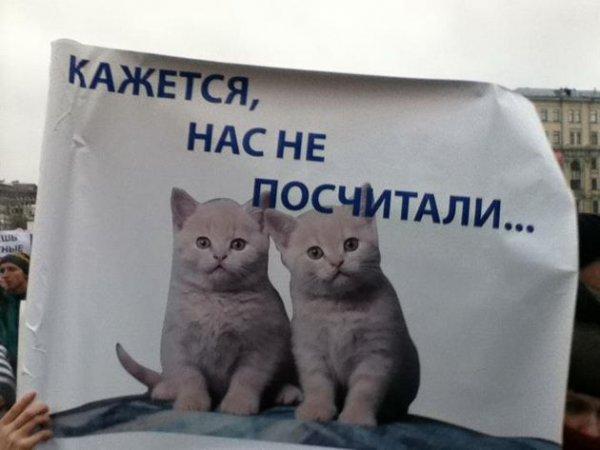 Забавные плакаты с Болотной