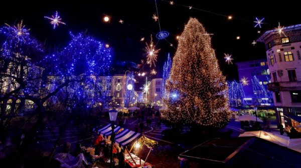 Праздник приближается: самые красивые рождественские елки-2011