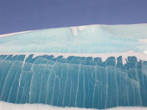 А в Антарктиде лето в самом разгаре