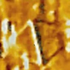 NASA отбивается от слухов о нетрадиционном НЛО
