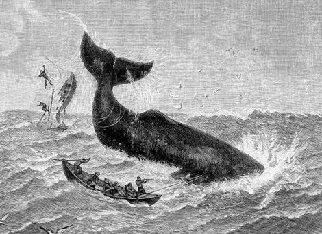 Невероятные морские истории
