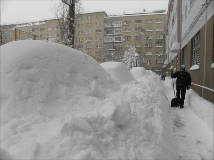 Зимняя забава - найди утром свою машину