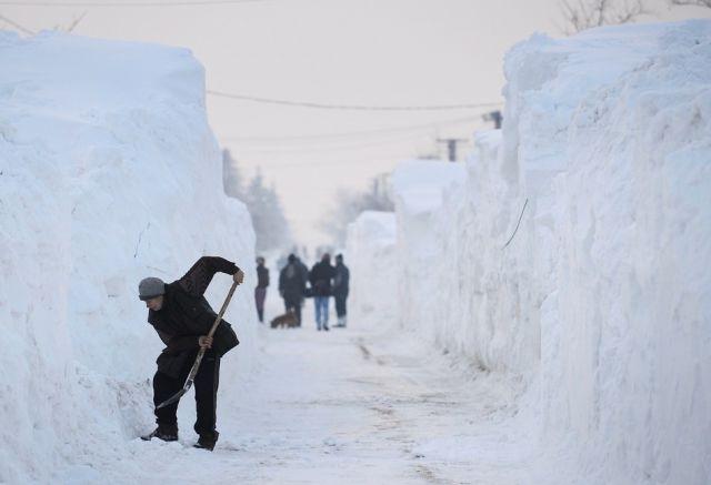 А вы хотите снежную зиму?