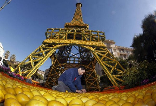 145 тонн цитрусовых на скульптуры