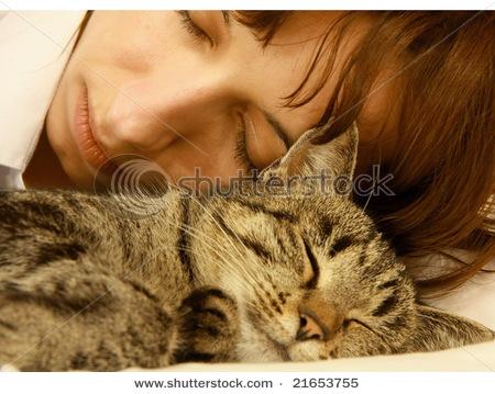 Кот или мужчина: кого же выбрать?