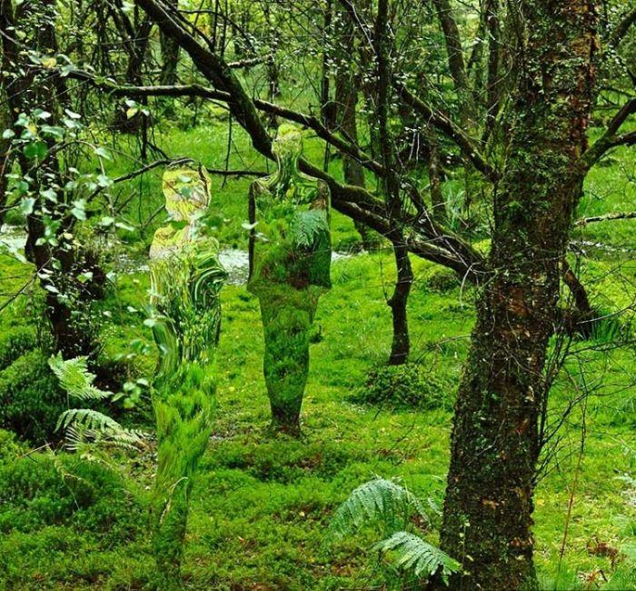 Почему туристы боятся гулять в лесу