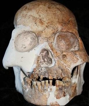 В Китае обнаружили останки совершенно нового вида человека