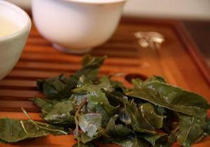 Китайский бизнесмен собирается использовать помет панд для производства элитного чая