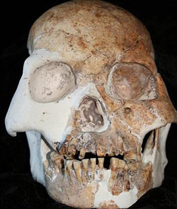 Нашли странный череп