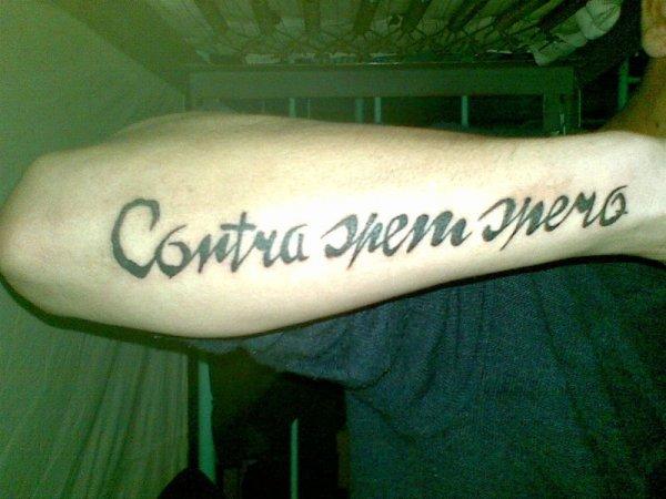 Наиболее популярные текстовые татуировки