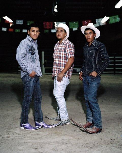 Аладдины мексиканские