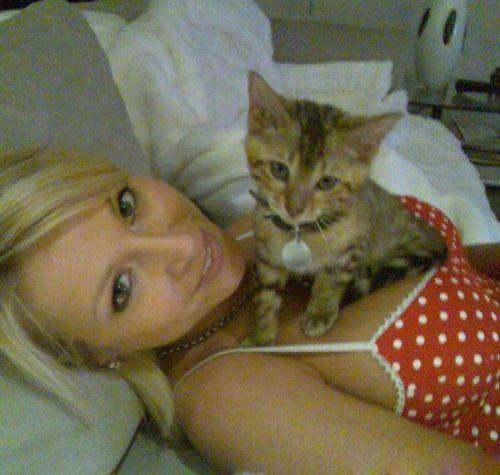 Коты и декольте
