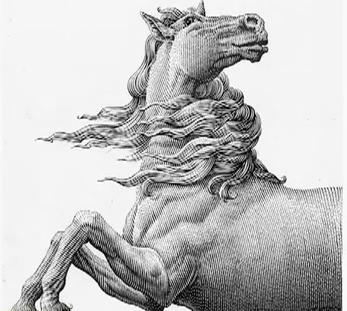 Лошадь, одержимая Дьяволом