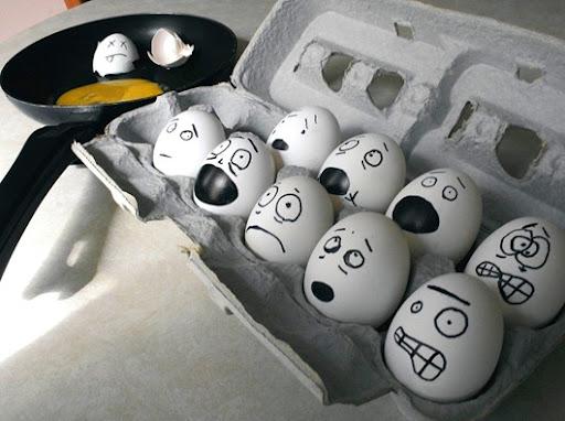 «Птичьи права» ударили по яйцам Евро Союза.