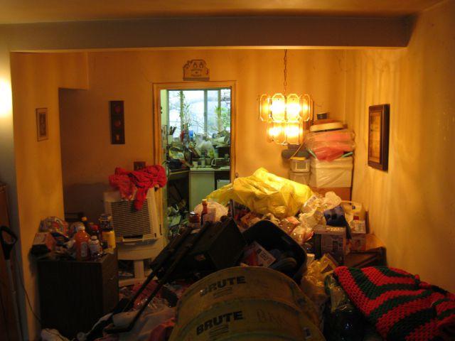 Дома настоящих поросят