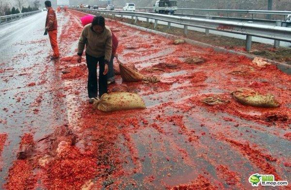 Кровавая драма на дороге
