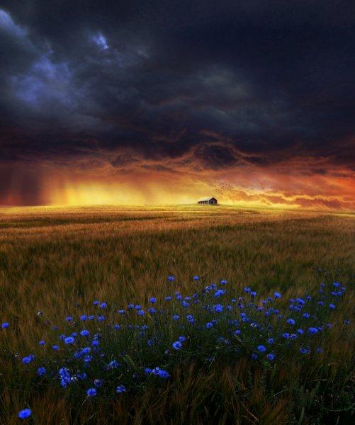 Photoart by kokoszkaa
