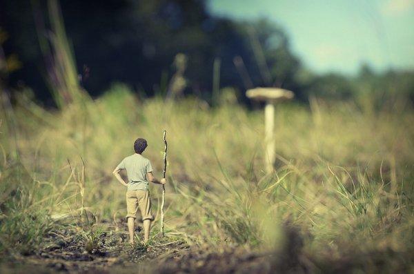 В стране маленьких человечков