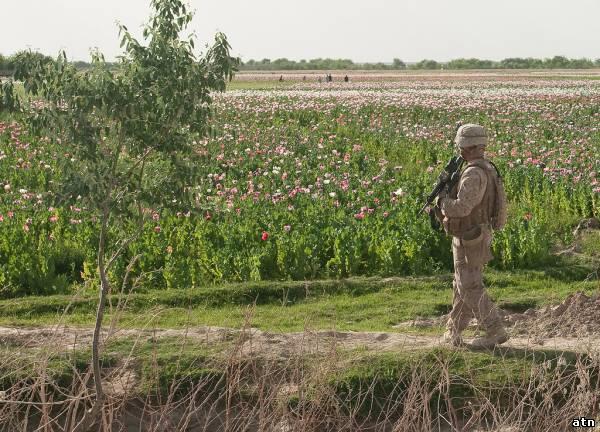 Афганские пейзажи.
