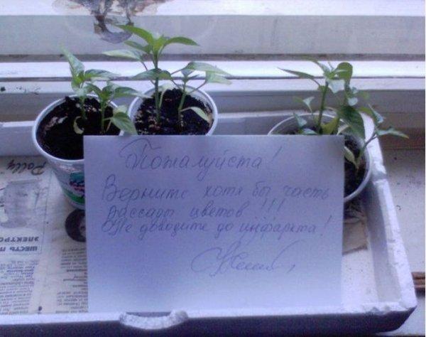 Послания соседям