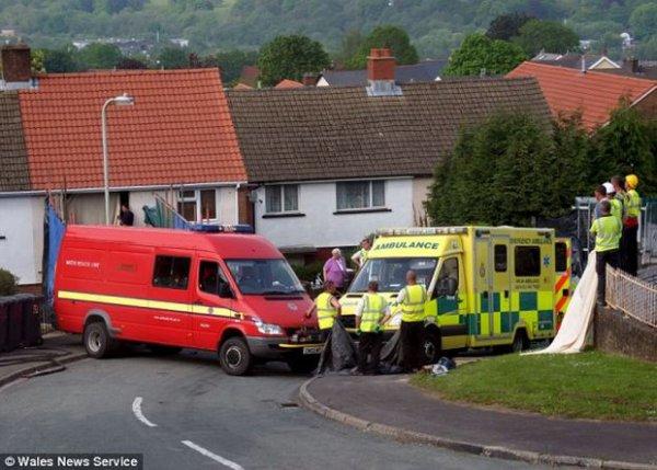 400-килограммовую британку пришлось вытаскивать через разлом в стене