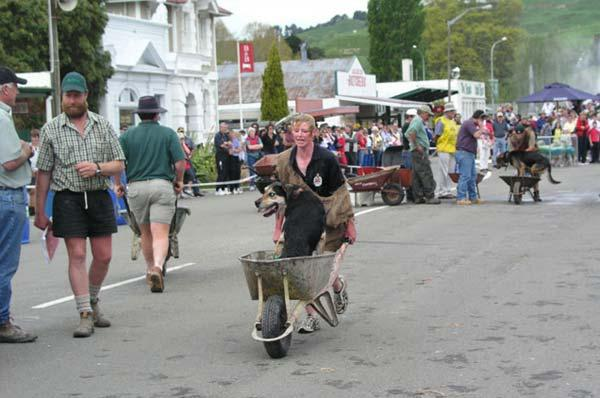 Соревнования в Новой Зеландии