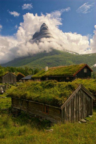 Необычные норвежские крыши из травы.