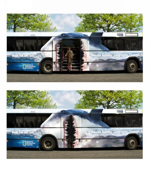 Рисунки на автобусах