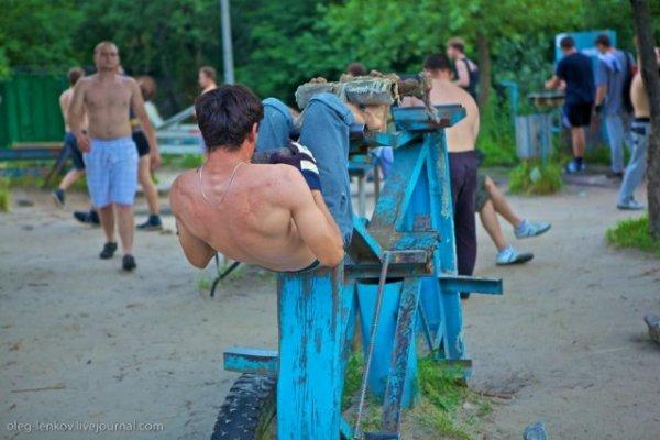 Качалка в Киеве
