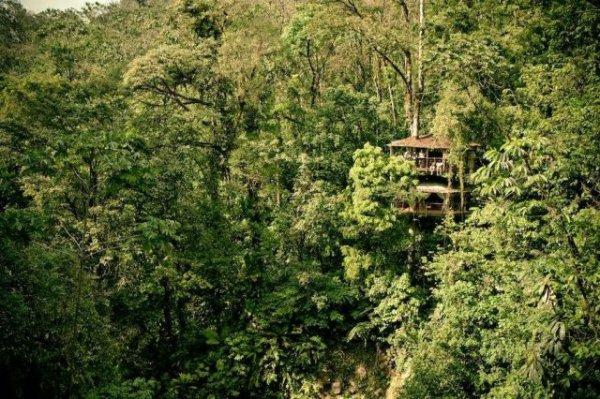 Деревня на деревьях в Коста-Рике