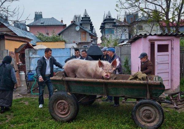 Дворцы румынских цыган