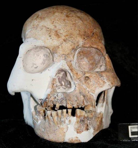 В Китае обнаружили принципиально новый вид древнего человека