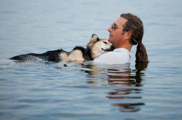 Американец ежедневно носит больного пса к озеру, чтобы тот выспался