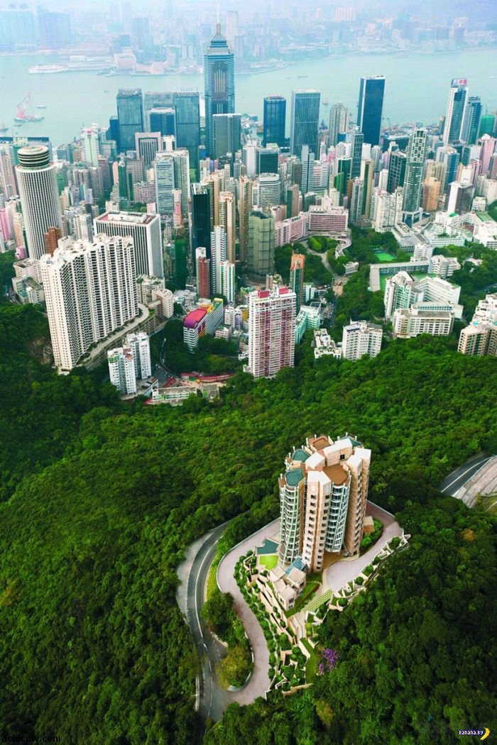 Вестник нищеброда. Самая дорогая квартира в Азии