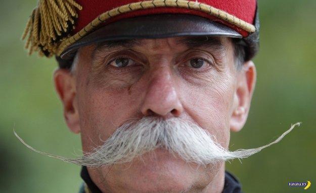 после усы военные картинки создает только