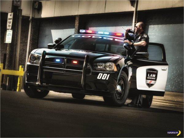 2014 Dodge Charger Pursuit AWD �������� ����������� �������������