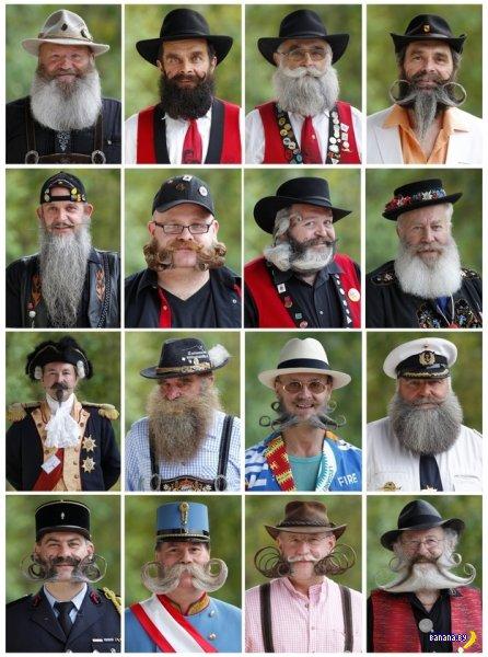 Новости с Европейского Чемпионата Бород и Усов 2012
