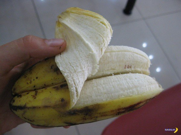 Осторожно, бананы-мутанты!