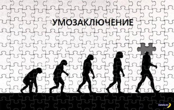 Эволюция под другим углом
