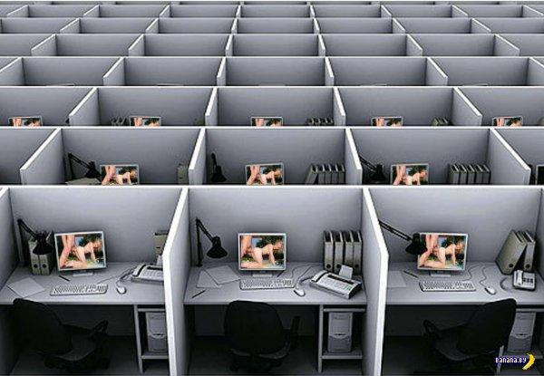 Увольнение за просмотр порно на рабочем месте