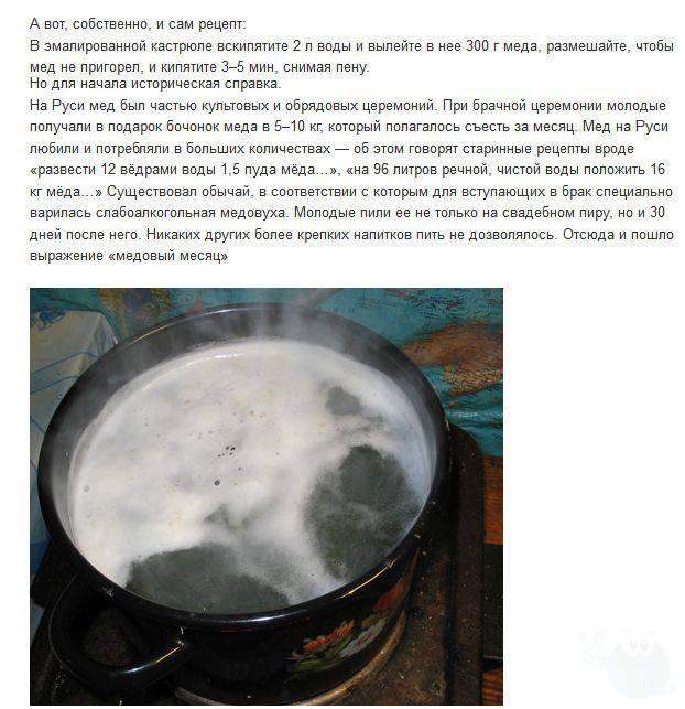 Рецепт медовухи с пергой в домашних условиях