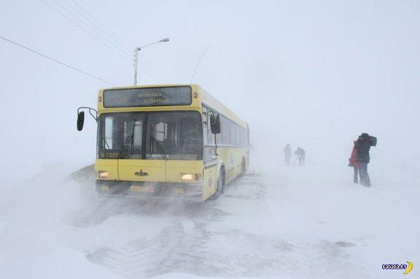 Зарплата водителя автобуса в Минске 1000$