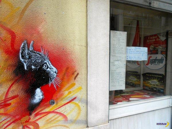 Стрит-арт от C215
