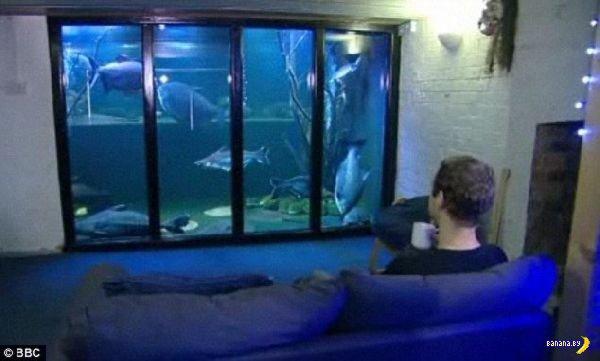 Вот завел себе рыбок мужик!