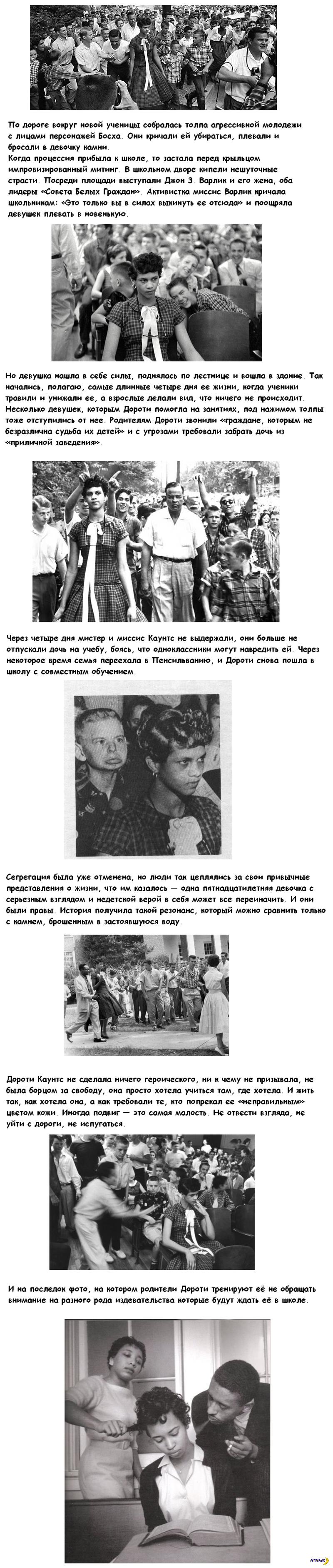 Дороти Каунтс
