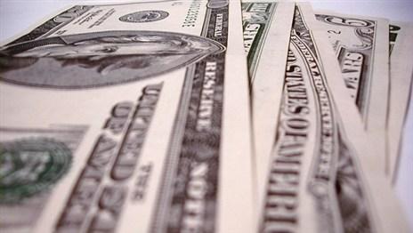 Власти Беларуси пытаются одолжить валюты у населения