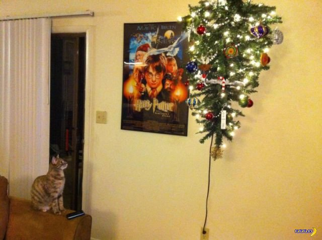 Коты и ёлки - как спасти их друг от друга?