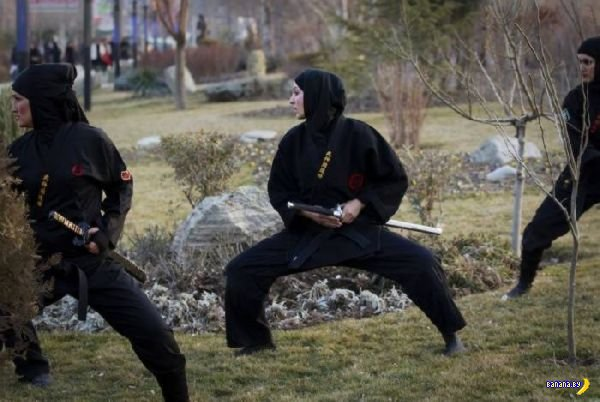 Иранские женщины-ниндзя