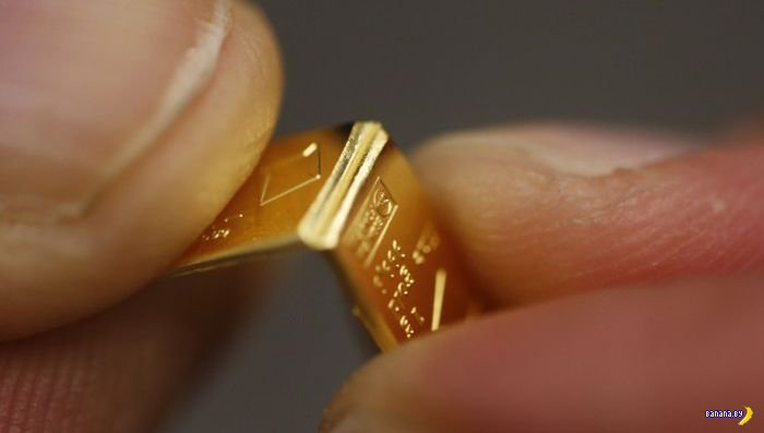 CombiBars - золотые шоколадки