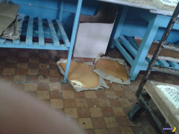 Осторожно с украинским хлебом!